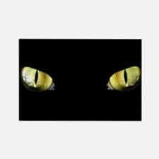 Cat Eyes Rectangle Magnet (10 pack)