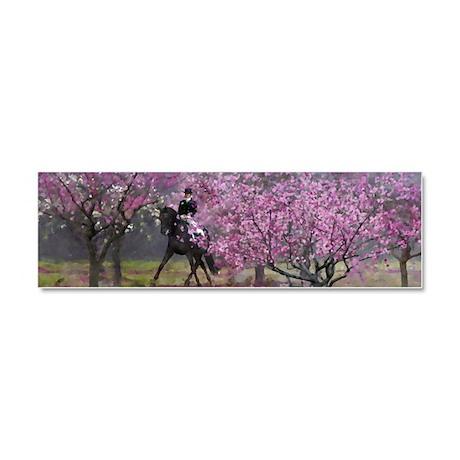 Spring Half Pass Dressage Car Magnet 10 x 3