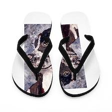 Springer Spaniel Flip Flops