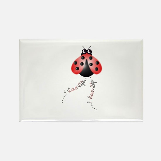 Ladybird Trails 1 Rectangle Magnet