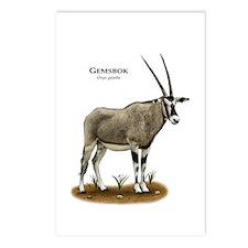 Fallow Deer Postcards (Package of 8)