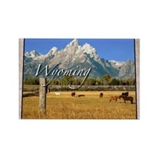 Wyoming Magnets