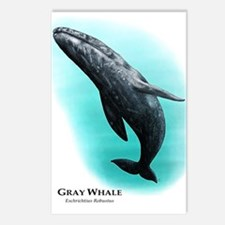 Gray Whale Postcards (Package of 8)