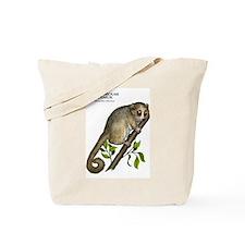 Gray Mouse Lemur Tote Bag