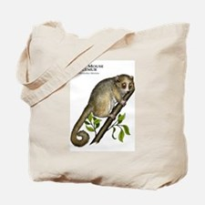Gray Mouse Lemur Tote Bag