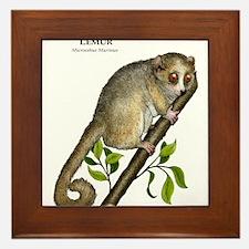 Gray Mouse Lemur Framed Tile