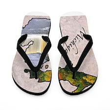 Cute Michigan Flip Flops