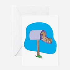 Squirrel Sleeping in Mailbox Greeting Card
