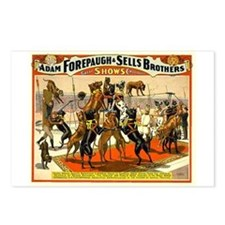 Colonel Schult's Great Danes Postcards (Package of