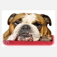 Bulldog 9W099D-039