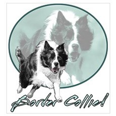 Border Collie Drive Canvas Art