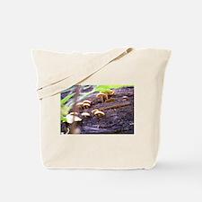 Toad Stools Tote Bag