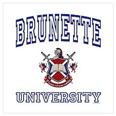 BRUNETTE University Poster