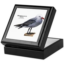 Heermann's Gull Keepsake Box
