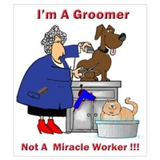 Groomer Poster