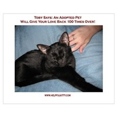 Adopted Pets Love Poster