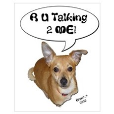 Chihuahua Talk! Poster