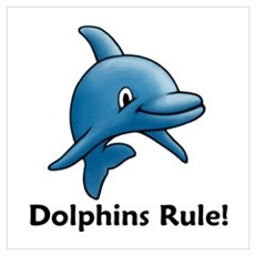 Dolphins Rule! Poster