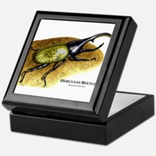 Hercules Beetle Keepsake Box