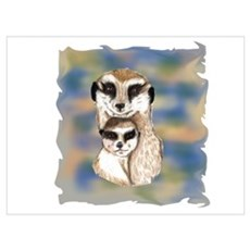 Meerkat mom and babe Poster