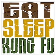 Eat Sleep Kung Fu Poster