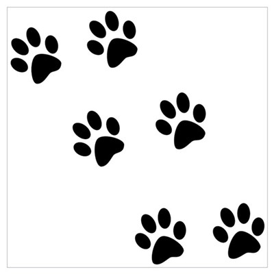 Walk-On-Me Pawprints Poster