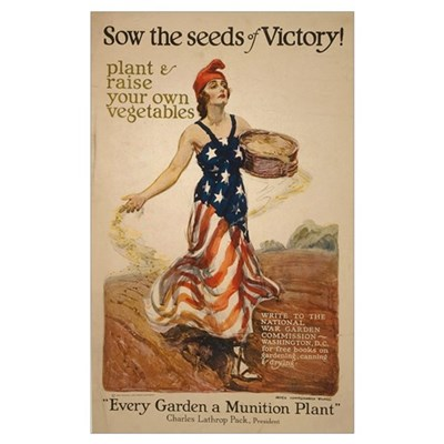 Sow Seeds of Victory Framed Print
