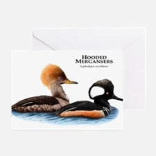 Hooded Mergansers Greeting Card