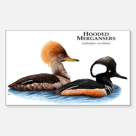 Hooded Mergansers Sticker (Rectangle)