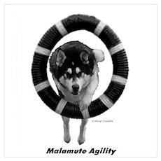 Malamute Agility Poster