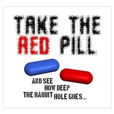 Take the red pill... Poster