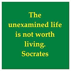 Wisdom of Socrates Poster