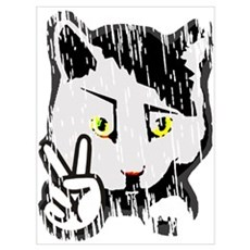 Peaceful Cat Poster