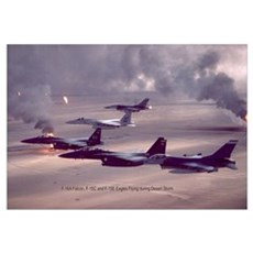 F-16 Falcon F-15 Eagle Framed Print