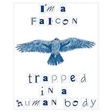 I'm a Falcon Poster