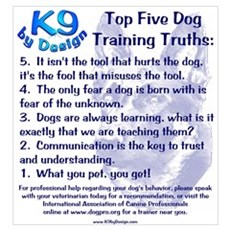 Top 5 Dog Training Truths Framed Print