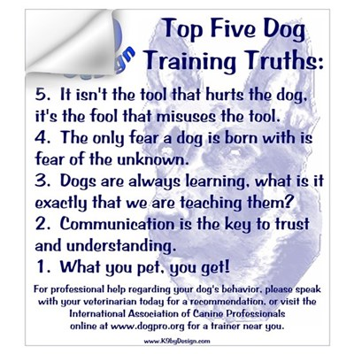 Top 5 Dog Training Truths Wall Decal