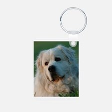 Pyr Aluminum Photo Keychain