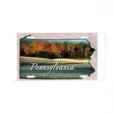 Unique Pennsylvania Aluminum License Plate