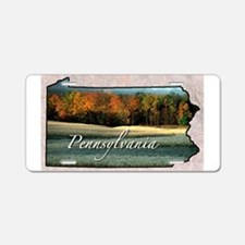 Cute Pennsylvania Aluminum License Plate