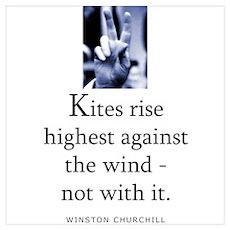 Kites rise Poster