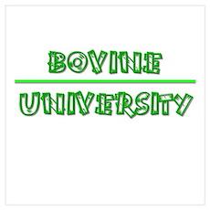 Bovine University Poster