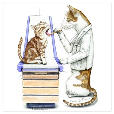 Doctor Cat Canvas Art