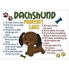 Dachshund Property Laws 4 Poster