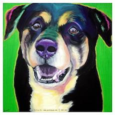 Bo Dog Poster