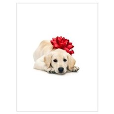 Golden Retriever Puppy with R Poster