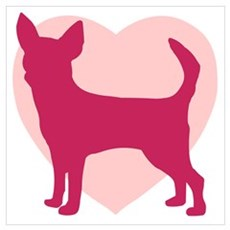 Chihuahua Valentine's Day Poster