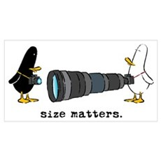 WTD: Size Matters Poster