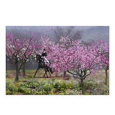 Spring Half Pass Dressage Horse Postcards (8)