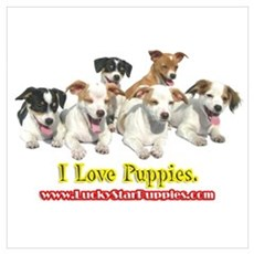 I Love Puppies 4A Poster